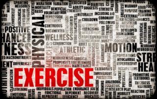 Lifexcel Carolina Exercise